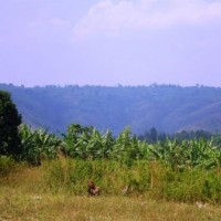 District of Ngoma Rwanda Mountains Agriculture